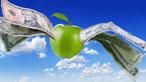 Apple Economy