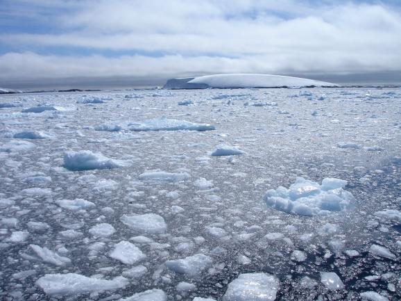 Los mares helados de la Antártida, así como el continente que rodean, son símbolos de lo inaccesible. Foto: Sebastián Álvaro