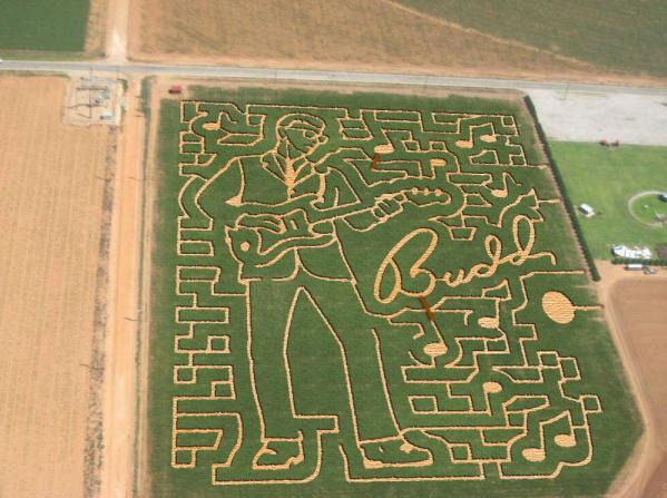 Buddy Holly maze